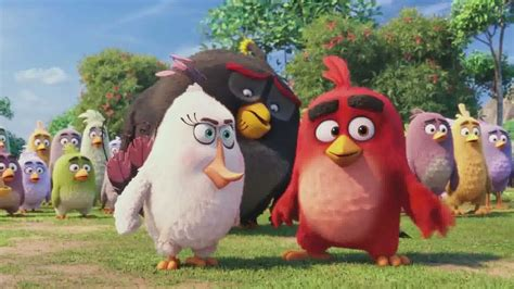 the angry birds movie 2016 netflix nederland films extrait du film angry birds le film angry birds