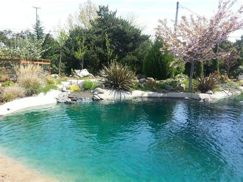 backyard beach pool backyard beach retreat pacific nw spring tropical