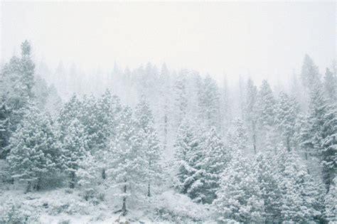 themes tumblr winter en mai fais ce qu il te pla 238 t