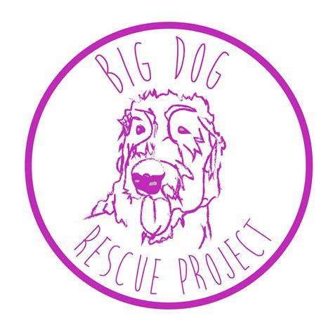 big rescue project ntxgivingday