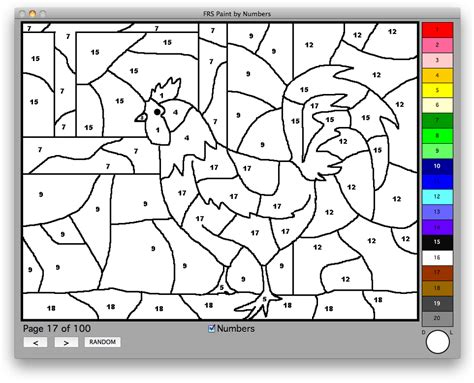 paint numbers software for kindergarten and elementary age