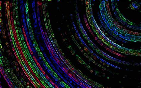 fractal background fractal backgrounds wallpaper cave
