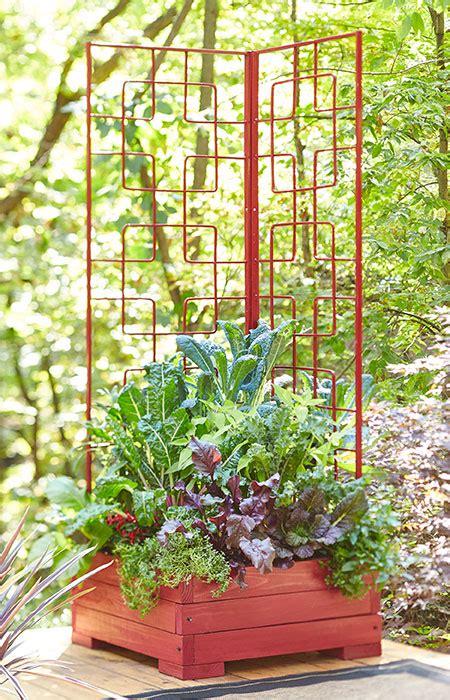 corner trellis planter