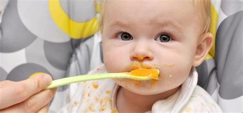 baby ab wann brot essen beikost ab wann zuf 252 ttern alles zur umstellung kidsgo