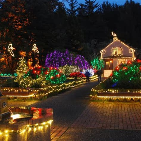 christmas illumination or christmas light critter sitter s lights in the usa
