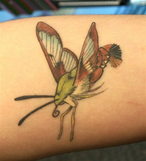 hummingbird butterfly tattoo designs best tatto design august 2010