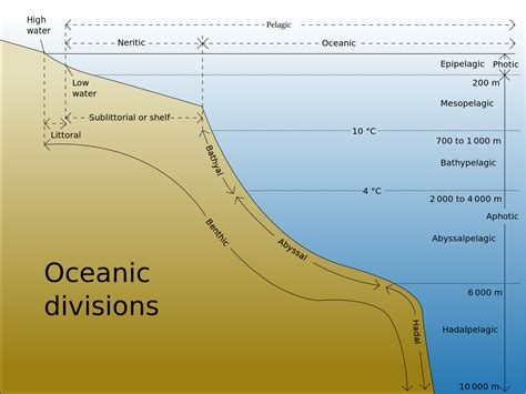 Depth Of Continental Shelf by Meteorology Is A Complete Global Flood Physically