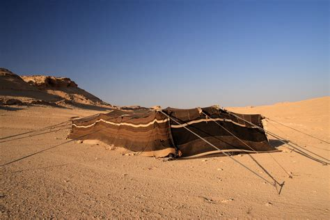 syrian desert file bedouin tent syrian desert 5079932783 jpg