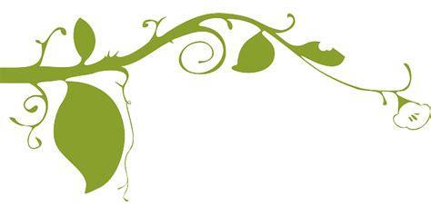 wallpaper bunga hijau gambar vektor gratis bunga hijau daun alam hiasan