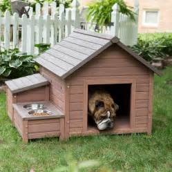 Small Dogs For Home House Designs With Creative Plans Homestylediary