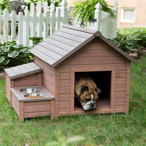 how big should a dog house be dog house designs with creative plans homestylediary com