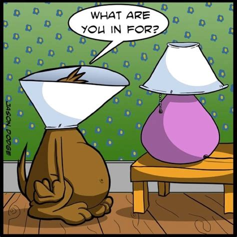 96 best images about funny dog cartoons on pinterest