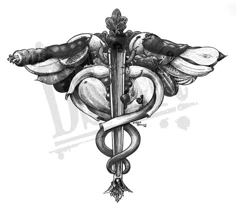 caduceus ds art