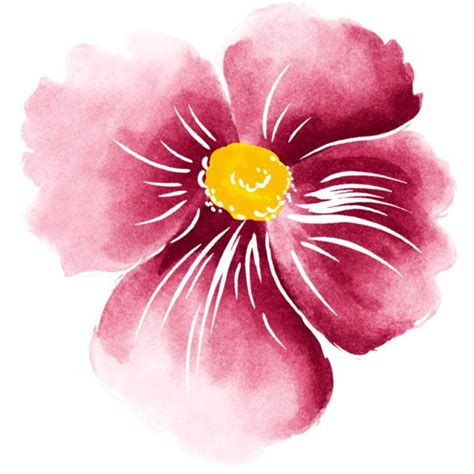 Painted Flower 499 best watercolor flowers 3 images on