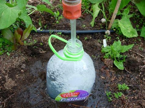 plastic bottle irrigation system home bottle drip irrigation
