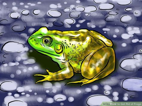 how to get rid of frogs in backyard 60 how to catch a frog in your backyard frogs are