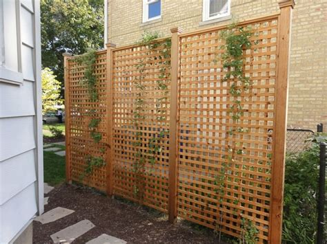 Design For Lattice Fence Ideas Freestanding Lattice Privacy Screen Backyard Ideas Backyards Lattices And Light