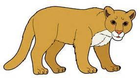 Lion Dessin Main Tete De Lion Dessinee Illustration L L L L L L L L L L L