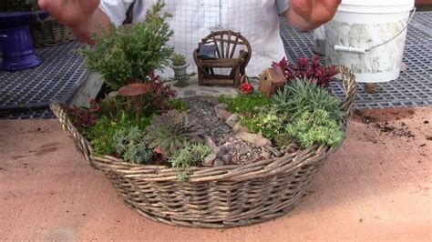 planting  miniature garden container youtube