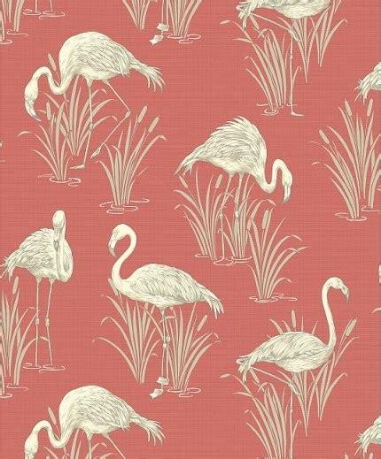 flamingo wallpaper albany flamingo wallpaper flamboyant eye catching