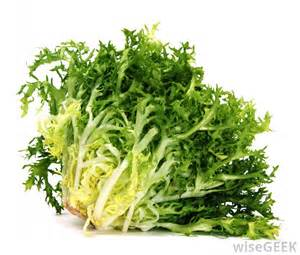 what are the different types of lettuce salad with pictures