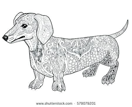 lps dachshund coloring pages lovely lps coloring pages dachshund contemporary exle