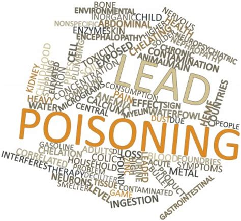 lead poisoning lead poisoning