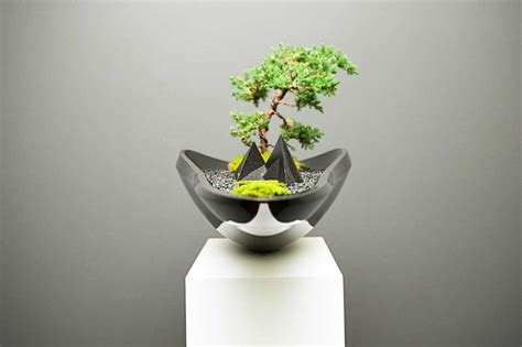 bonsai planter elegant kasokudo bonsai planter inspired by the automotive