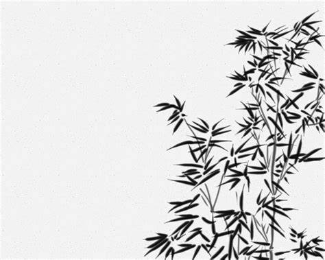 Bamboo Wall Mural black and white bamboo wallpaper collection 63