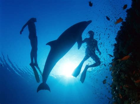 underwater dive scuba diving indulge in fascinating greece travel tips