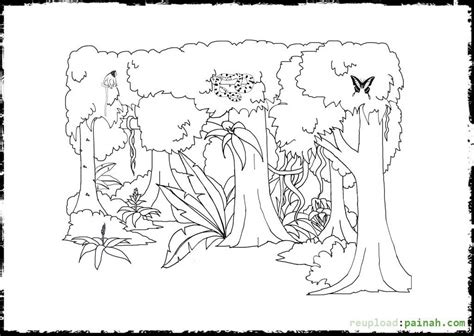 printable rainforest flowers tropical rainforest plants printables sketch coloring page