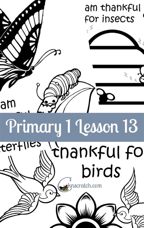 coloring pages birds and insects lesson 13 i am thankful for birds and insects chicken