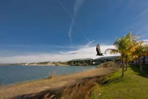 Fort Myers Flowers - florida gulf coast university fort myers fl