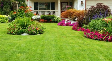 beautiful yards tips for getting your yard ready for summer