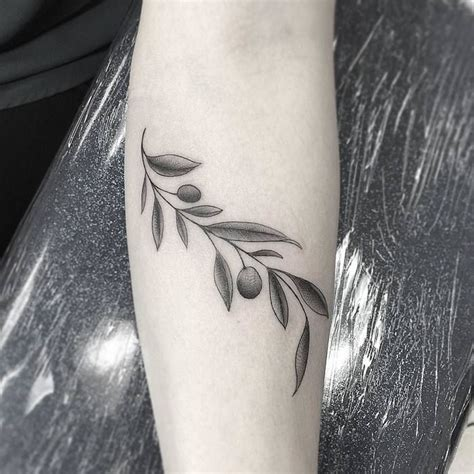 olive branch tattoo best 25 olive branch ideas on olive