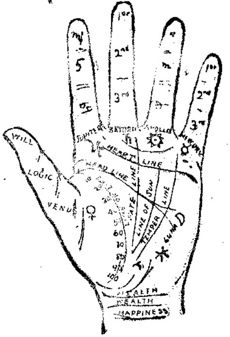 palm reading basic principles and through the looking glass gazing into the