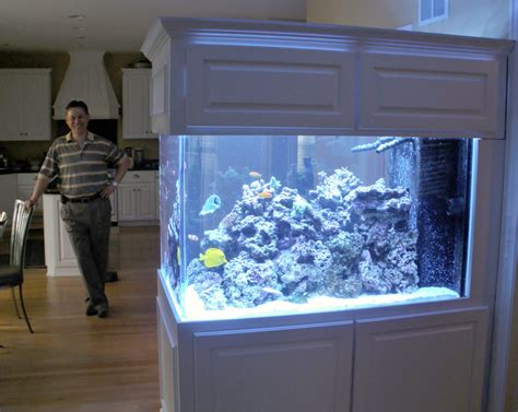 Aquarium Room Divider Room Divider Aquarium And Owner Blue Planet Aquarium
