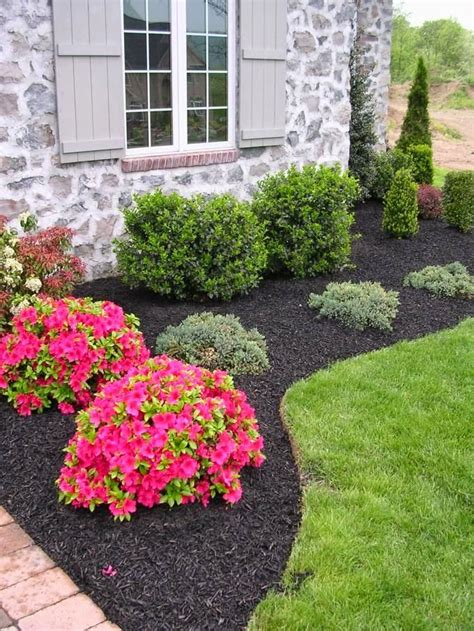 best 25 azaleas landscaping ideas on yard
