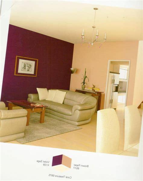asian paints colour combination dining room paint