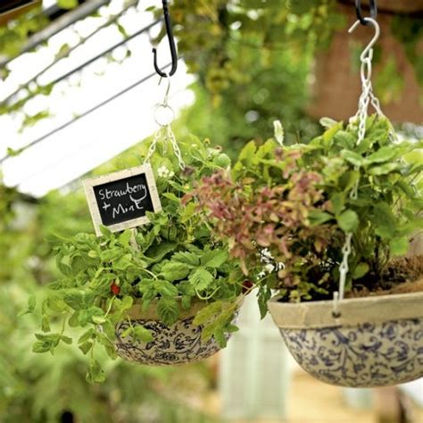 lovely hanging garden herb baskets