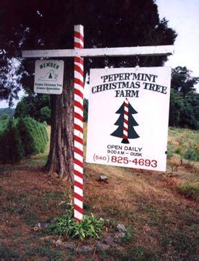 culpeper tourism glengary tree farm