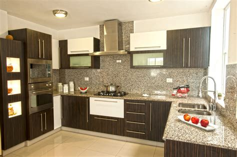 decorative kitchen cabinets decorative kitchen modern kitchen cabinetry by disfamosa