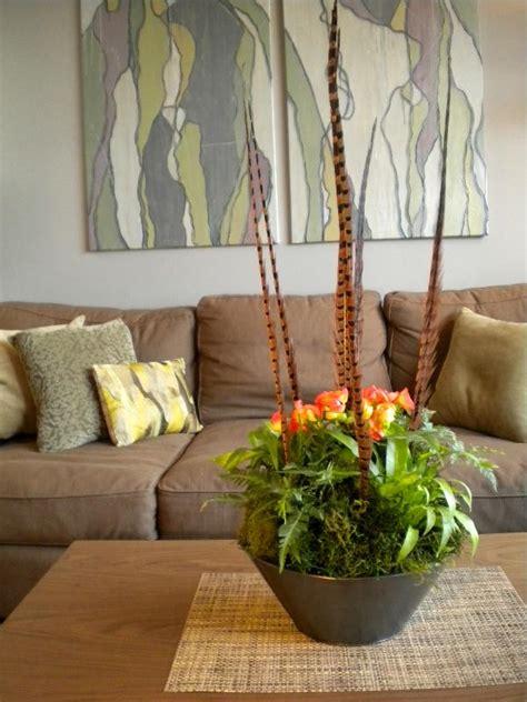 decorating  houseplants