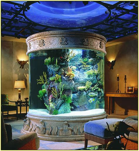 mh fish house amazing fish tanks home design ideas