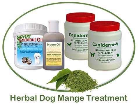 mange treatment mange treatment