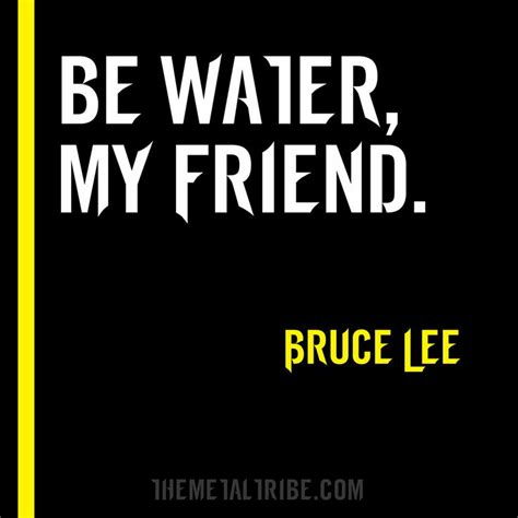 bruce water quote best 25 bruce water quote ideas on bruce