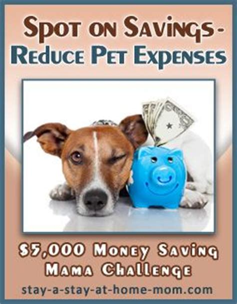 Small Stay At Home Dogs 44 Best Images About 5 000 Money Saving Challenge On