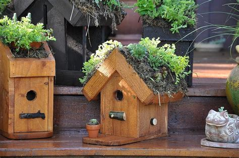 Bird House Decorating Ideas by Bird Houses Decorating Ideas Birdcage Design Ideas