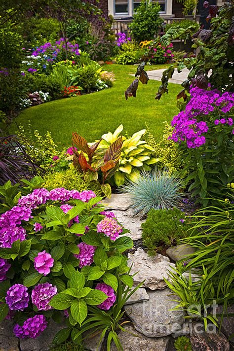 Garden Flowers For Sale Rock Garden Flowers Posters For Sale