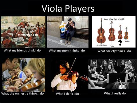 Orchestra Memes - viola meme